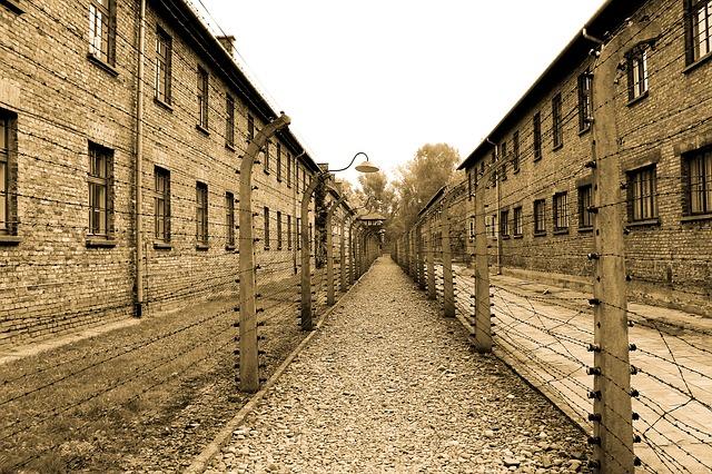 Auschwitz 385639 640
