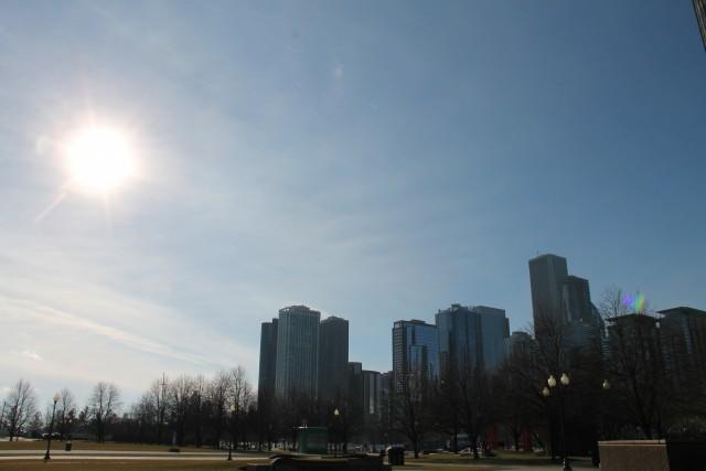 Bare trees city skyline sun sky 640x427