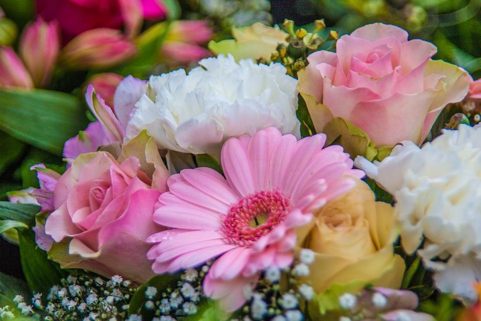 Flowers 986006 960 720