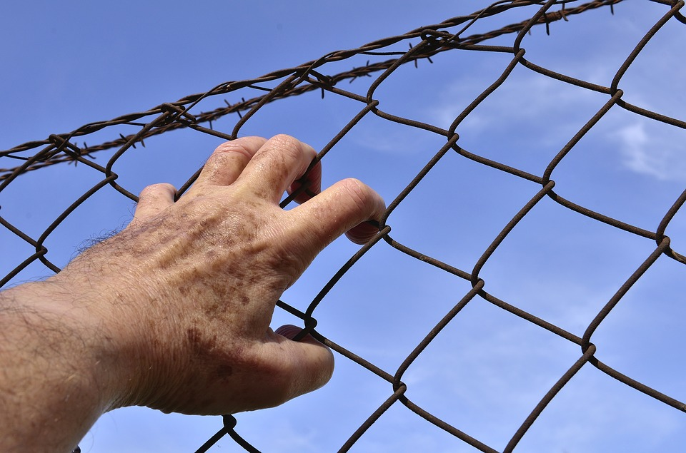 Barbed wire 1408454 960 720