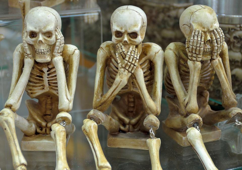 Skeletons 1617539 960 720