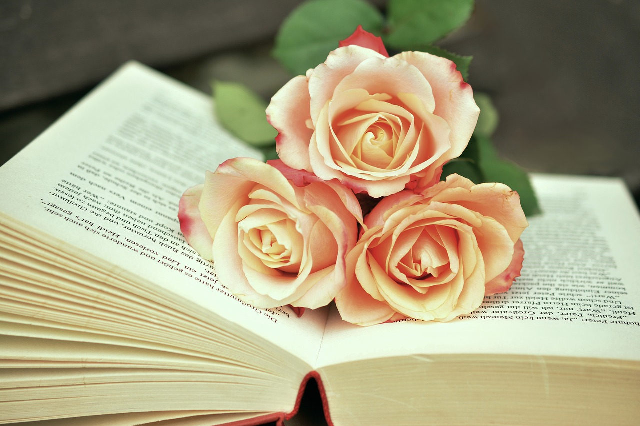 Book 1771073 1280
